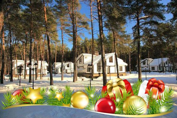 Дом отдыха для пожилых людей в подмосковье на рождество дом престарелых перово новогиреево в москве